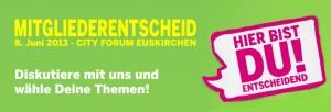 Mitgliederentscheid zur Bundestagswahl 2013